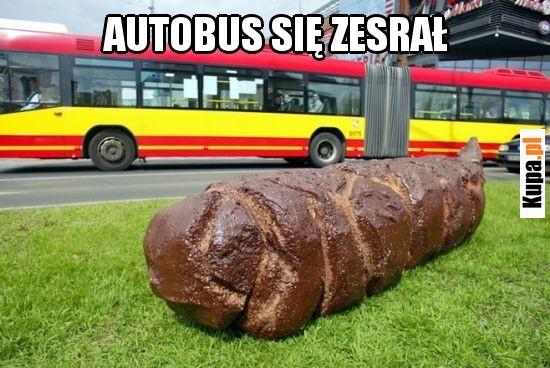 Autobus się zesrał