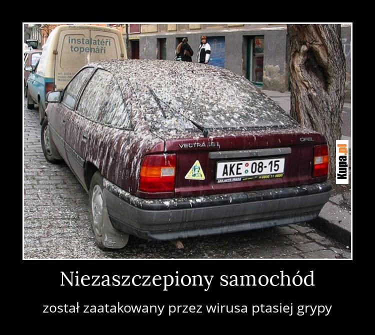 Sensacja! Niezaszczepiony samochód zachorował na ptasią grypę