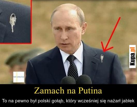 Zamach na Putina - To na pewno był polski gołąb, który...