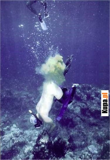Tymczasem gdzieś w głębinach morskich/oceanicznych