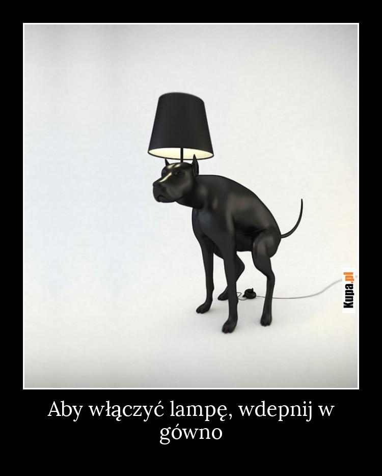 Aby włączyć lampę, wdepnij w gówno