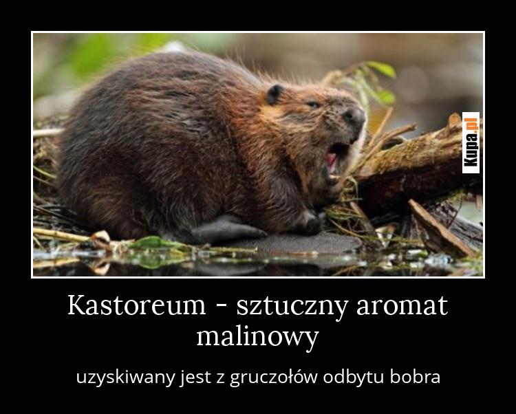Kastoreum - sztuczny aromat malinowy